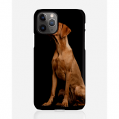 Designer skal till Apple iPhone 11 Pro Max - Pat2476